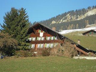 4 bedroom Apartment in Lenk, Bernese Oberland, Switzerland : ref 2299588, Lausana