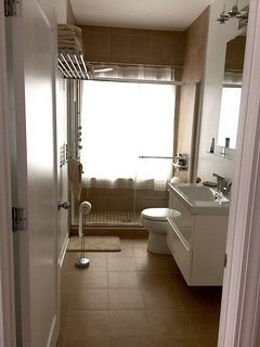 This full bathroom is connected to the Green guest bedroom on the first floor - massage rain shower