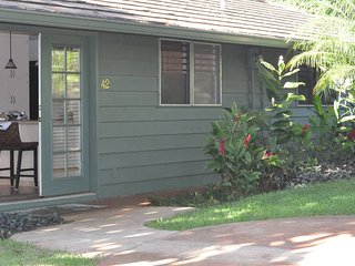 3 bed in Kaanapali AC walk to the Beach, Lahaina