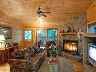 Pet Friendly Georgia Vacation Cabin, Ellijay