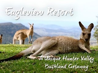 EAGLEVIEW RESORT - A UNIQUE HUNTER VALLEY GETAWAY, Vacy