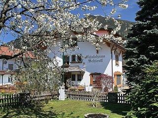 Elfriede #6572, Kaltenbach