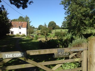 Welcoming cottage near Wells