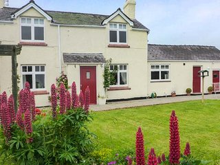 PLAS CWTTA, family-friendly, woodburning stove, hot tub, near Ruthin, Ref 917621