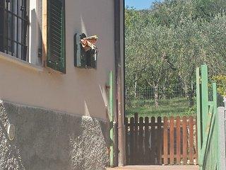 Beb Elena, Vezzano Ligure