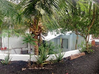 El Oasis del Eden, Puerto Ayora