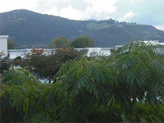 Location Location Location, Rotorua