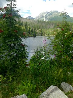 Walk around Strbske Pleso Lake, 15 mins drive