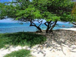 Villa de Laurence in Savaneta 4 bed 2 bath -  Walk to Beach!