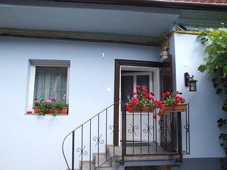 Blue House, Brasov