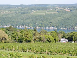 Enjoy the Vineyard View on Keuka Lake Wine Trail, Hammondsport