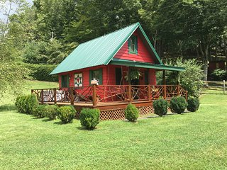1 Night Stays Approved! Honeymoon Cabin with HOT TUB, Firepit, WiFi & River!
