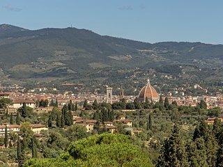 Terrazza su Firenze