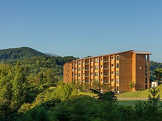 MoutainLoft Resort at Gatlinburg