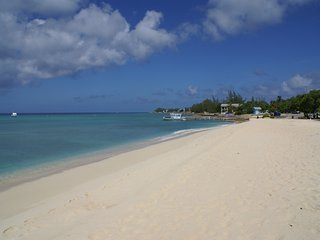 calypso cove #5 'Beach comber'