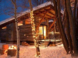 1Bd/1Ba Fireside Cabin A