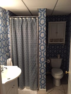 Downstairs Full Bathroom with Stand-Up Shower