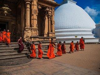 Classic Sri Lanka the paradise island explored