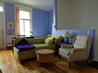 Jan - April 2017 Sunny  warm artist's apartment, Montreal
