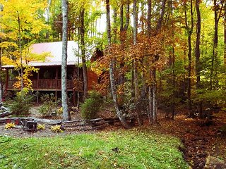 COZY LOG CABIN WITH HOT TUB, WIFI & PETS OK! BOOK NOW FOR YOUR FALL RETREAT!