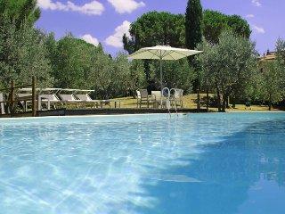 Montalcino - 3519001