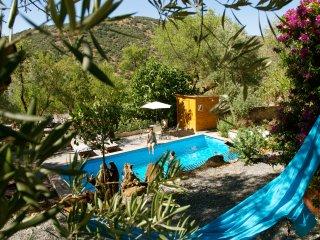 Villa Vital Oasis among olive groves