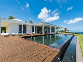 Truffle - Amazing, Luxurious and Modern One Bedroom Villa on St Martin, Terres Basses