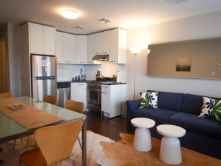 Modern luxury 2 bedroom apartment, Brooklyn