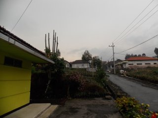 Homestay Anggun 3 Near Bromo Warm And Comfortable, Bromo Tengger Semeru National Park