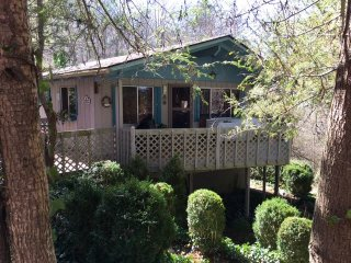 Charming 3 Bedroom cabin nestled among the trees., Franklin