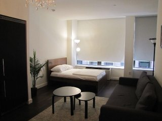 Luxury Fully Furnished Financial District Studio, New York City