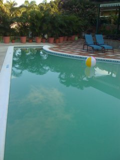 The pool at Calming Waters Riverside Villa over looking the Great River peaceful and great therapy..