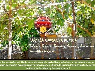Agrocamping y cabaña