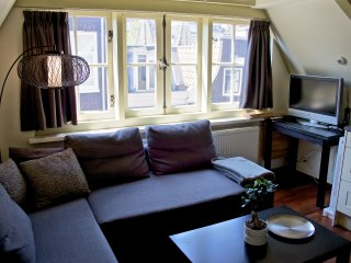 Amsterdam Center Mini-Penthouse Leidseplein