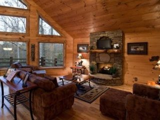Blue Ridge Georgia Cabin with beautiful wooded setting, Ellijay