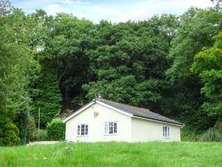 SUNNYSIDE LODGE, romantic retreat with hot tub, all ground floor, woodburner, nr Aberdare, Ref 941276