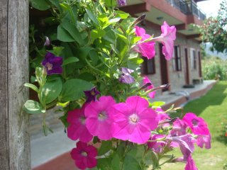 nature front guest house, sedibagar-26, pokhara