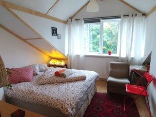 4. Bright & cosy room, Reikiavik