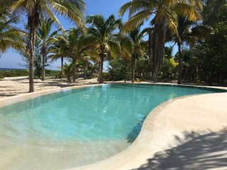 The large private beachfront property with laguna pool, WIFI and AC, Telchac Puerto