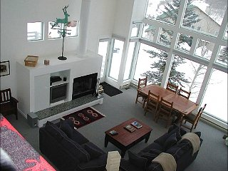 Bright & Spacious Home - Recently Remodeled (1387), Crested Butte