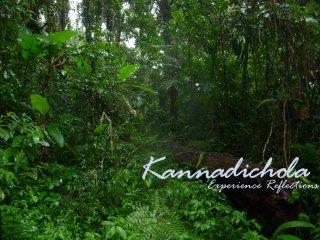 Kannadichola, Vythiri