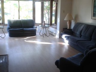 Furnished luxury condo 4 bd, 3 ba, spa like facilities, parking available