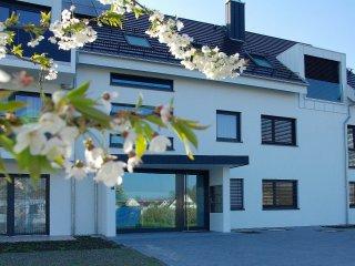 Ferienhaus Seezeichen, Wasserburg am Bodensee