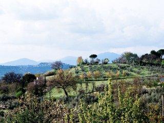 Casa Poggio - serene stone farmhouse, Lazio, Italy