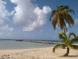 T2 Cajou : plages 250m & commerces 200m
