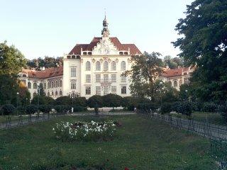 Tour guide managed, 9 ppl, free parking, balcony, Prague