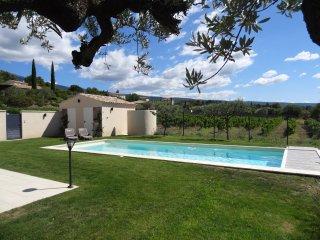 Vacances - piscine privee chauffee - Bedoin