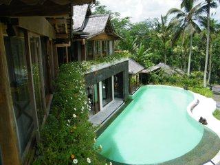 VILLA 400 m²+ jardin +  piscine 18mX7m , ZEN,, Ubud