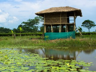 Farmstay in Assam, Verdant Acres Farm & Adventure Camp