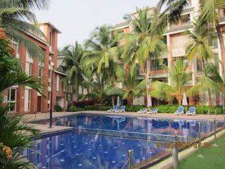 3 Qty (1bhk at Arpora North Goa)